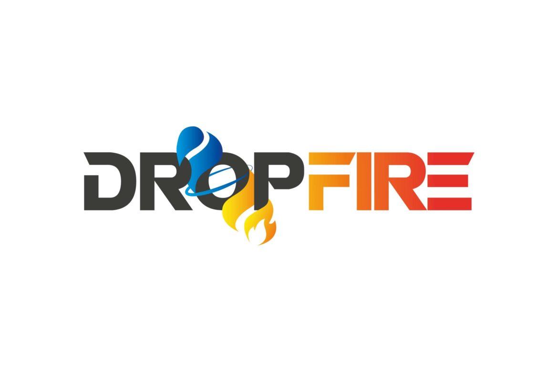 BRAND-BOOK_DROPFIRE-03